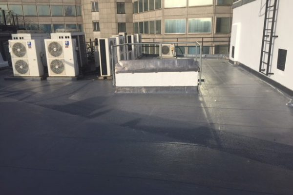 Aldwych roof repairs